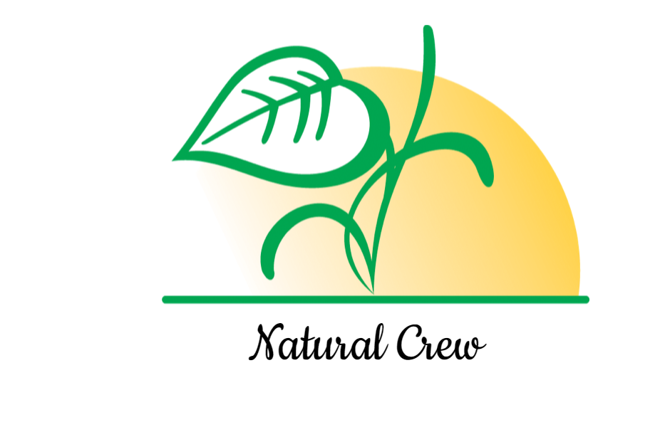 Nuevos diseños de logotipos (10/05/16) - LogoseaLogosea