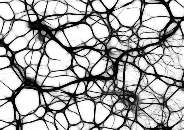 las neuronas son parte fundamental en las conexiones de nuestro cerebro. Entenidendo su funcionamiento se podrán aplicar mejores técnicas de marketing y diseño